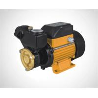 Wholesale Vortex pump/Peripheral pump/Surface pump GP130 from china suppliers