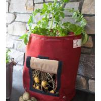 Wholesale with this grow bag,you will love gardening job,happy life will be shared with your family from china suppliers
