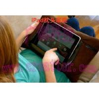Wholesale Ipad Pillow/Ipad Cushion from china suppliers