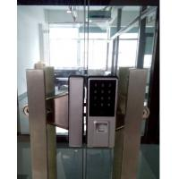 Price best seller zinc alloy silvery biometric glass door lock for office
