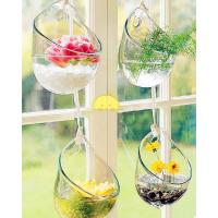 Wholesale Handblown glass pendants,handblown glass hanging vases,DJ-10006 from china suppliers