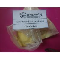 Buy cheap Buy Trenbolone Enanthate 100mg / ml Steroid Oil  Buy Parabolan Anabolic Steroid Powder from wholesalers