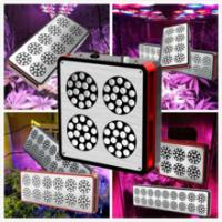 Wholesale CIDLY 200w 300w 400w 600w hans panel led grow light full spectrum Veg and Flower High par from china suppliers