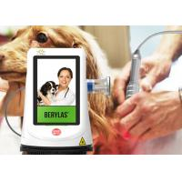Wholesale Veterinary Rehabilitation High Dose Laser Treatment Machine For Pain Management from china suppliers