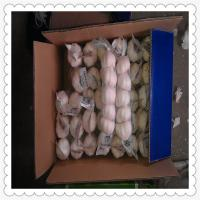 Wholesale Shandong pure white garlic 2015 Natural White Fresh Garlic For Sale from china suppliers