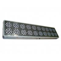 Wholesale CIDLY 20 aeroponic system led lights 900w grow lights for indoor plants from china suppliers