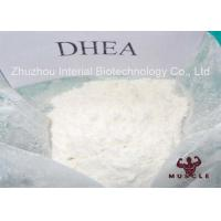 Wholesale Pharm Grade Homebrew Steroids Pure DHEA Powder For Gain Strength CAS 481-29-8 from china suppliers