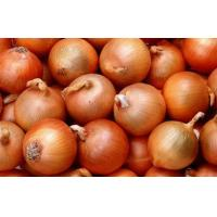 Wholesale Golden Sweet Natural Fresh Onion Contains Pantothenic Acid ( B5 ) , Water, Better quality from china suppliers