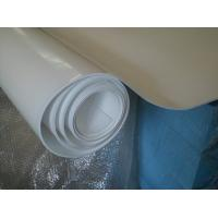 Wholesale 70shore A Colored Plastic Sheet Expand Teflon Sheet For Pharmaceutical , Chemical from china suppliers
