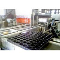 Wholesale Industry Automatic Cake Maker Cooling Line Tunnel Baking Oven Included from china suppliers