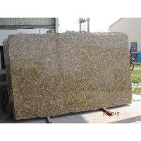Wholesale Giallo Forito Granite Slab/ Tile/ Wall Tile from china suppliers