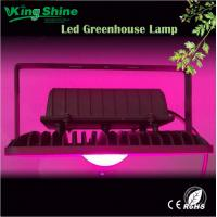 Wholesale high quality 50w Cob led flood grow light 7band full spectrum for medical plants from china suppliers