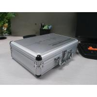 Wholesale 4.1.0 Polish language Version Quantum Sub Health Analyzer AH-Q41 Silver color from china suppliers