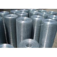 Wholesale 10 Gauge Welded Wire Mesh Hot Dipped Galvanized For Chicken / Garden Fencing from china suppliers
