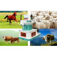 Wholesale Jingerui easy operation sheep feed particle machine china for sale -----Jingerui from china suppliers