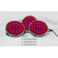 Wholesale 2015 best 300w cheap LED grow lights red blue uv 4 buttons on/off from china suppliers