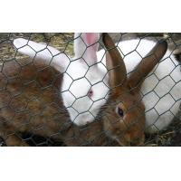 Wholesale Rabbit-Proof Fencing,Galvanized Rabbit Guard Netting,Hare Fencing,Garden Shield Fence from china suppliers