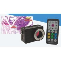 Wholesale Highest sensitive hd microscope camera 2 / 3 inch ( pixel size 2.5um ) and 1 / 1.9 inch from china suppliers
