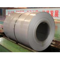Wholesale Customized Stainless Steel Hot Rolled Coil Steel , 304 304L Stainless Steel Coil from china suppliers