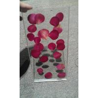Wholesale Tempered Laminated Decorative Glass Partition For Office With Rose Real Plant from china suppliers