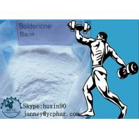 Wholesale 99% Purity White Powder Boldenone Steroid for Body Building CAS 846-48-0 from china suppliers