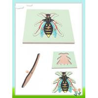 Wholesale Wasp Puzzle from china suppliers