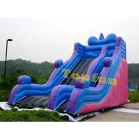 Wholesale Outdoor Durable Inflatable Slide With Simple But Gental For Amusement Park from china suppliers