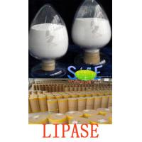 Wholesale 400000u/g Lipase Enzymes Used In Food Processing Powder Typed Szym-LIP400BA from china suppliers