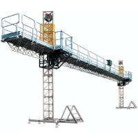 Wholesale Twin Mast Climbing Work Platform / climbing safety equipment 1500 - 3600kgs for construction from china suppliers