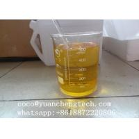 Wholesale Testosterone Enanthate 250mg/ml,Semi - finished Injectable Steroids Liquid Test-E 250 for bodybuilding and weight loss from china suppliers