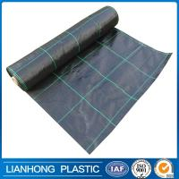 Wholesale grid pattern pp woven weed control fabric, ground cover net/weed mat for agriculture from china suppliers