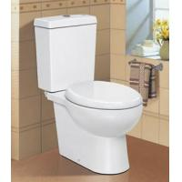 Wholesale Eco Washdown Toilet(Two-piece toilet ) from china suppliers