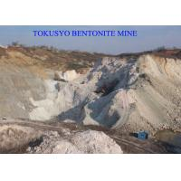 Wholesale 300 Mesh Absorbent Foundry Bentonite Used Of Green Sand Mold from china suppliers