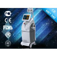 Wholesale Professional Cryolipolysis Slimming Machine , 4 Handles Fat Freezing System from china suppliers