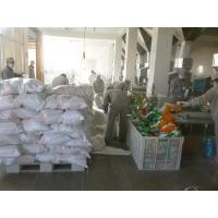 Wholesale Iraq 3500g  deteregent powder from china suppliers