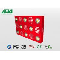 Wholesale 2000W Powerfull Cree Chip Led Grow Lights For Growing Plants Indoors from china suppliers