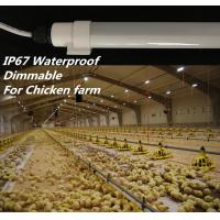 Wholesale Dimmable T10 Chicken Farm Lighting , SMD2835 Led Tube Light With Connector from china suppliers