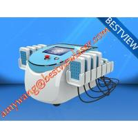 Wholesale Best selling  plant price Portable Lipolaser BM-199 slimming machine from china suppliers