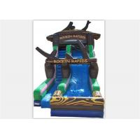 Wholesale Popular Inflatable Water Slide ,  Commercial Inflatable Water Slide With Tree Shape from china suppliers