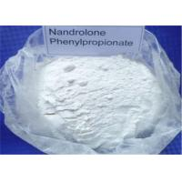 Wholesale Healthy Durabolin Nandrolone Phenylpropionate Anti Estrogen Drugs Bodybuilding 62-90-8 from china suppliers
