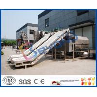 Wholesale SUS304 SUS316L Fruit Clapboard Elevator Fruit Processing Equipment For Fruit Conveying from china suppliers