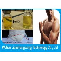Wholesale Semi-finished  Liquid Test Pro Testosterone Anabolic Steroid Testosterone Propionate 100 for Muscle Gain from china suppliers