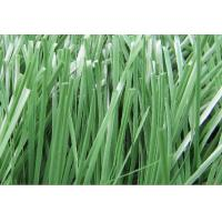 Wholesale Field Green Synthetic Turf Lawns 50mm 9800Dtex Football Artificial Grass from china suppliers