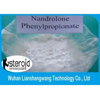 Wholesale 99% High Purity Steroid Powder CAS 62-90-8 Nandrolone phenylpropionate from china suppliers