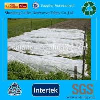 Wholesale PP Spunbond agricultural floating row cover from china suppliers