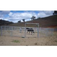 Wholesale Galvanized Horse Panel / Livestock Yard from china suppliers