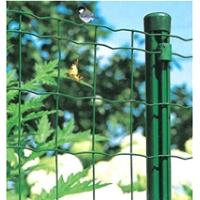 Quality Green Wire Mesh fence green PVC coated wire fencing for sale