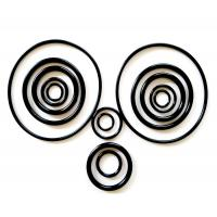 Wholesale Black Rubber Viton O-Ring Approved JISB 2401 / GB / T3452.1 Standard With Resistant Solvents from china suppliers