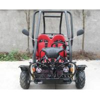 Wholesale SAMLL 110cc Go Kart Buggy / Adult Off Road Go Kart With Double Adjustable Seat from china suppliers