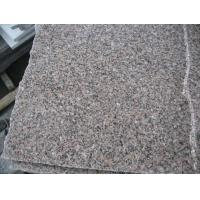 Wholesale G367 granite slabs from china suppliers